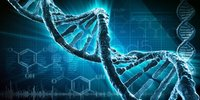 New Modifications to the DNA Structure, Creating New Life Forms